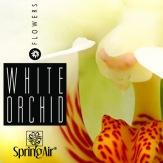 SpringAir White Orchid